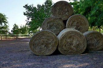 Szénavásárlás lovas-agrármérnök szemmel